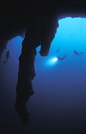 Belize Diving Atoll Adventure Tour includes the Turneffe Islandsf