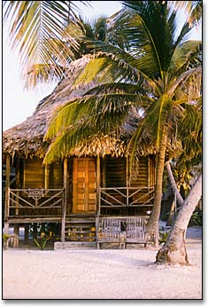 captain morgan's retreat, san pedro, ambergris caye, belize, cabana