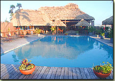 captain morgan's retreat, san pedro, ambergris caye, belize, pool