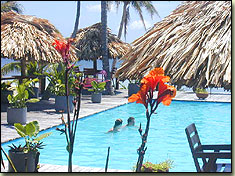 captain morgan's retreat, san pedro, ambergris caye, belize, swimming pool